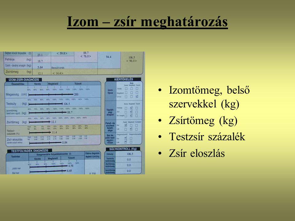 Izom – zsír meghatározás Izomtömeg, belső szervekkel (kg) Zsírtömeg (kg) Testzsír százalék Zsír eloszlás