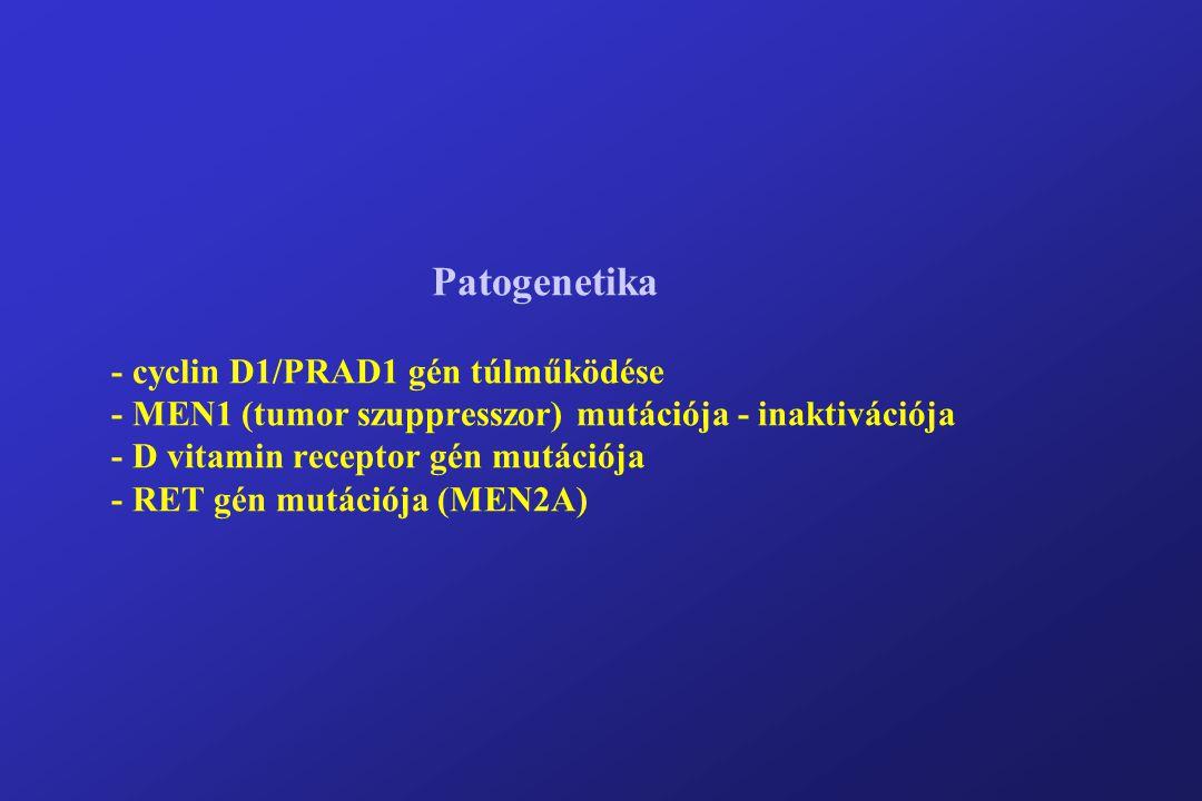 Patogenetika - cyclin D1/PRAD1 gén túlműködése - MEN1 (tumor szuppresszor) mutációja - inaktivációja - D vitamin receptor gén mutációja - RET gén mutációja (MEN2A)