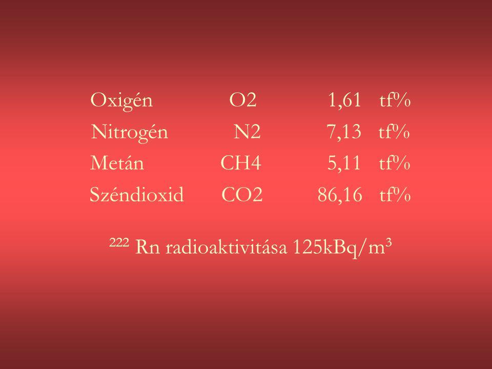 Oxigén O2 1,61 tf% Nitrogén N2 7,13 tf% Metán CH4 5,11 tf% Széndioxid CO2 86,16 tf% 222 Rn radioaktivitása 125kBq/m 3