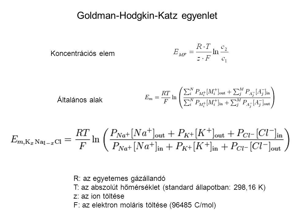 Goldman-Hodgkin-Katz egyenlet Koncentrációs elem Általános alak R: az egyetemes gázállandó T: az abszolút hőmérséklet (standard állapotban: 298,16 K)