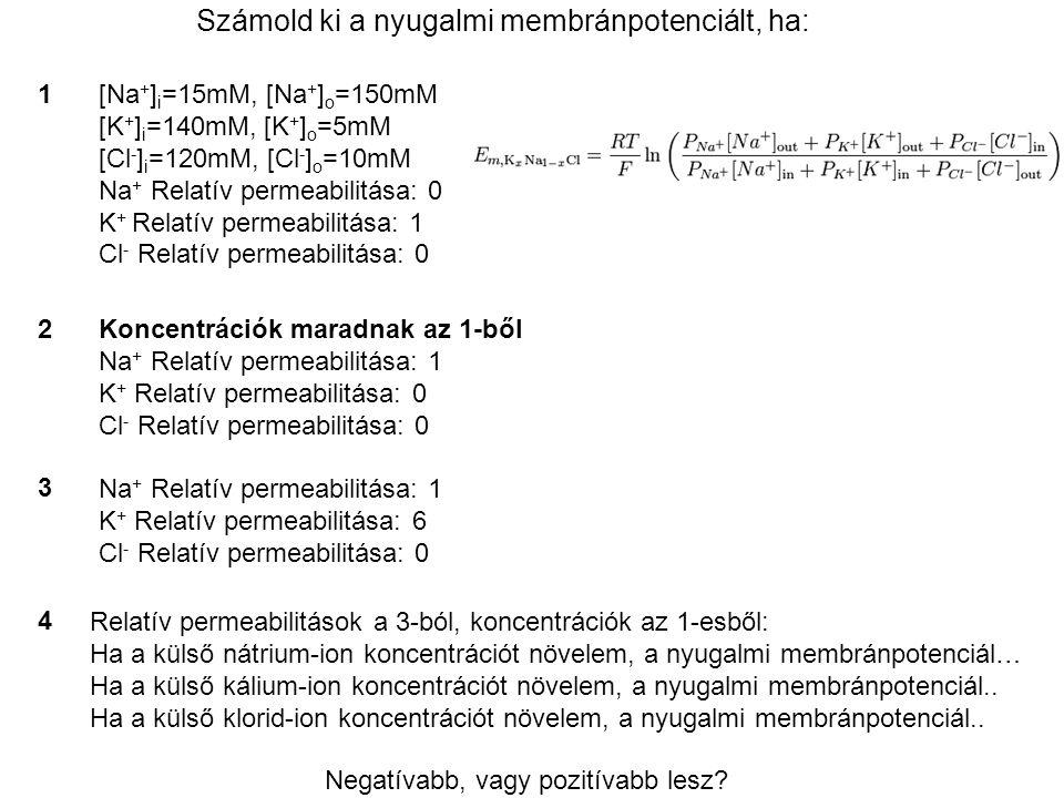 Számold ki a nyugalmi membránpotenciált, ha: [Na + ] i =15mM, [Na + ] o =150mM [K + ] i =140mM, [K + ] o =5mM [Cl - ] i =120mM, [Cl - ] o =10mM Na + R