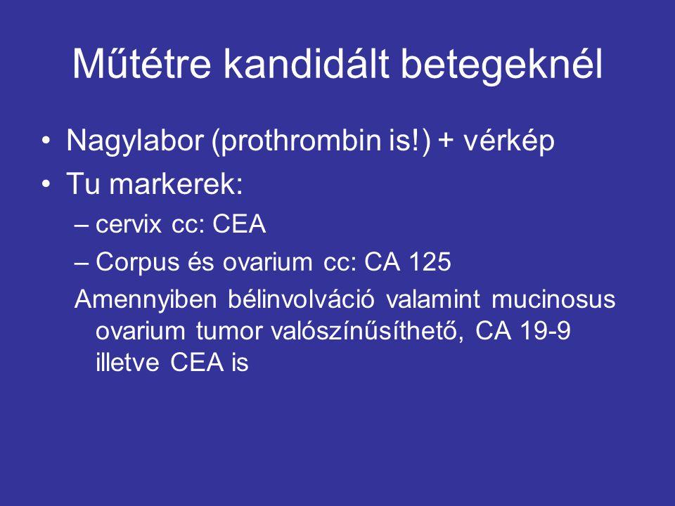 Műtétre kandidált betegeknél Nagylabor (prothrombin is!) + vérkép Tu markerek: –cervix cc: CEA –Corpus és ovarium cc: CA 125 Amennyiben bélinvolváció