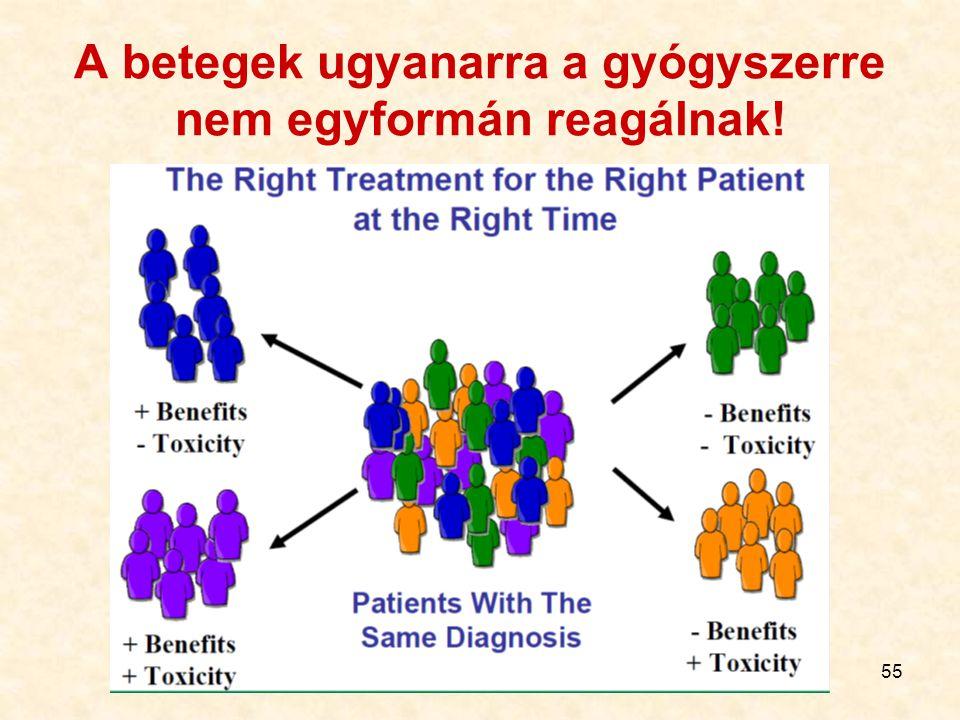 55 A betegek ugyanarra a gyógyszerre nem egyformán reagálnak!