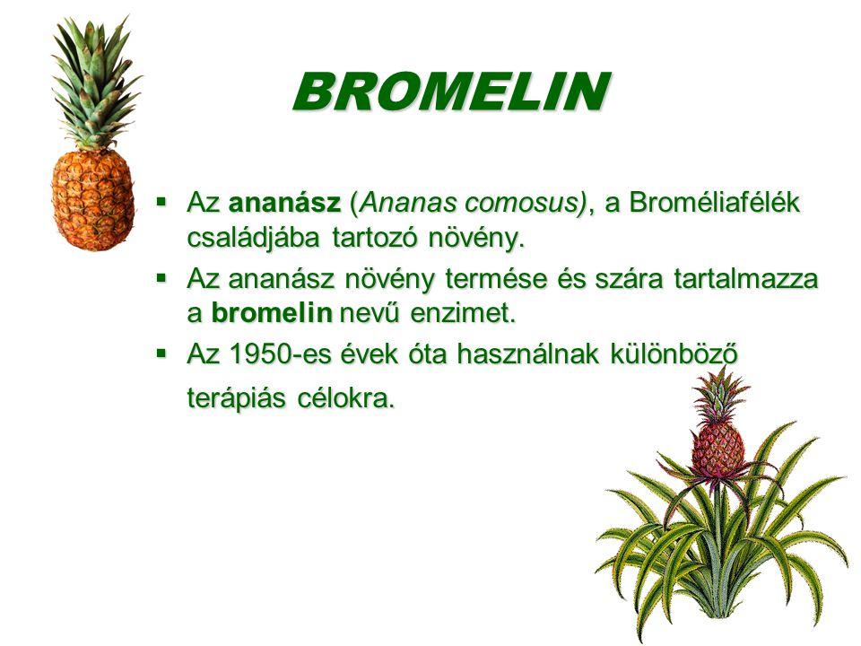 BROMELIN  Az ananász (Ananas comosus), a Broméliafélék családjába tartozó növény.  Az ananász növény termése és szára tartalmazza a bromelin nevű en