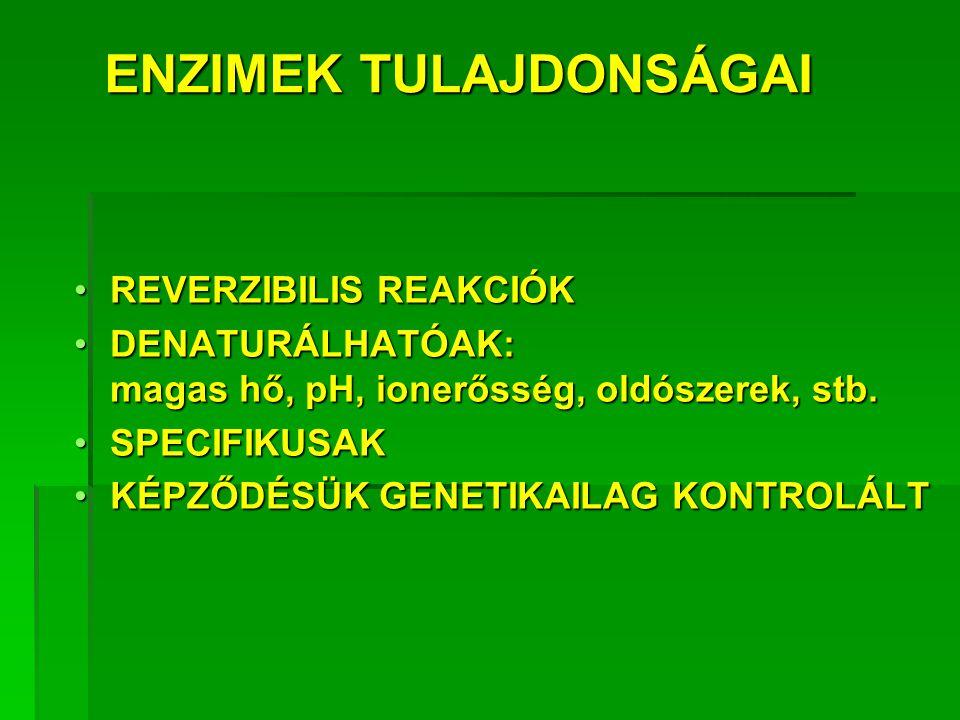 ENZIMEK ELŐNYEI NAGYOBB REAKCIÓSEBESSÉG 10 6 -10 12 *NAGYOBB REAKCIÓSEBESSÉG 10 6 -10 12 * ENYHÉBB REAKCIÓKÖRÜLMÉNYEKENYHÉBB REAKCIÓKÖRÜLMÉNYEK NAGYOBB REAKCIÓ- + SPECIFITÁSNAGYOBB REAKCIÓ- + SPECIFITÁS REGULÁLHATÓSÁGREGULÁLHATÓSÁG