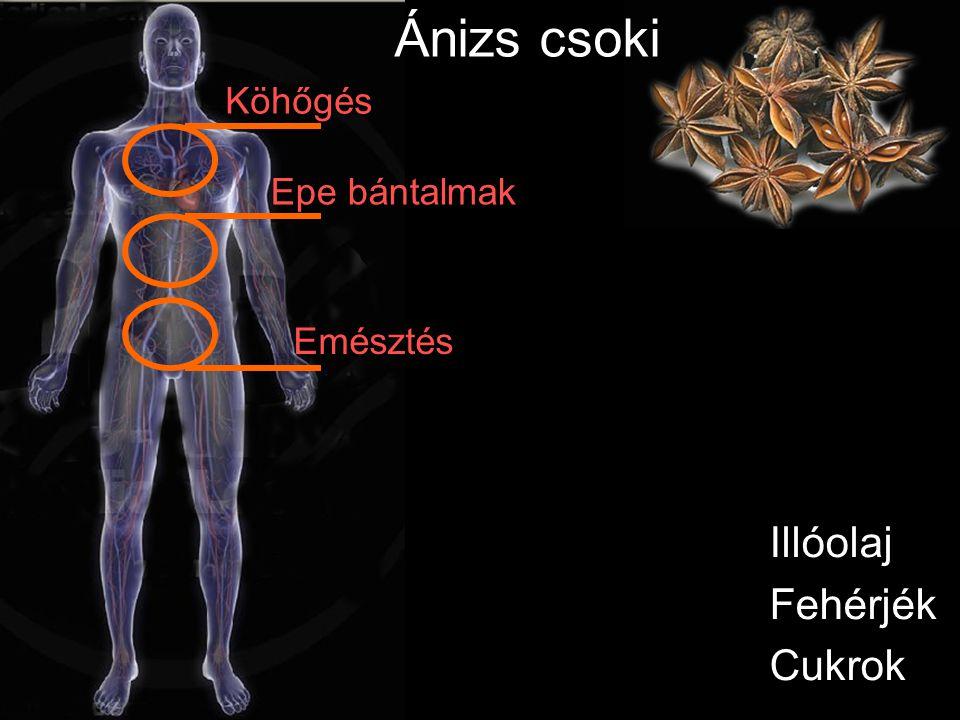 Kálium Vas Kalcium Foszfor Szilvahéj csoki Vértisztító Immunerősítő Vérnyomás csökkentő Vesevédő Emésztési zavarok