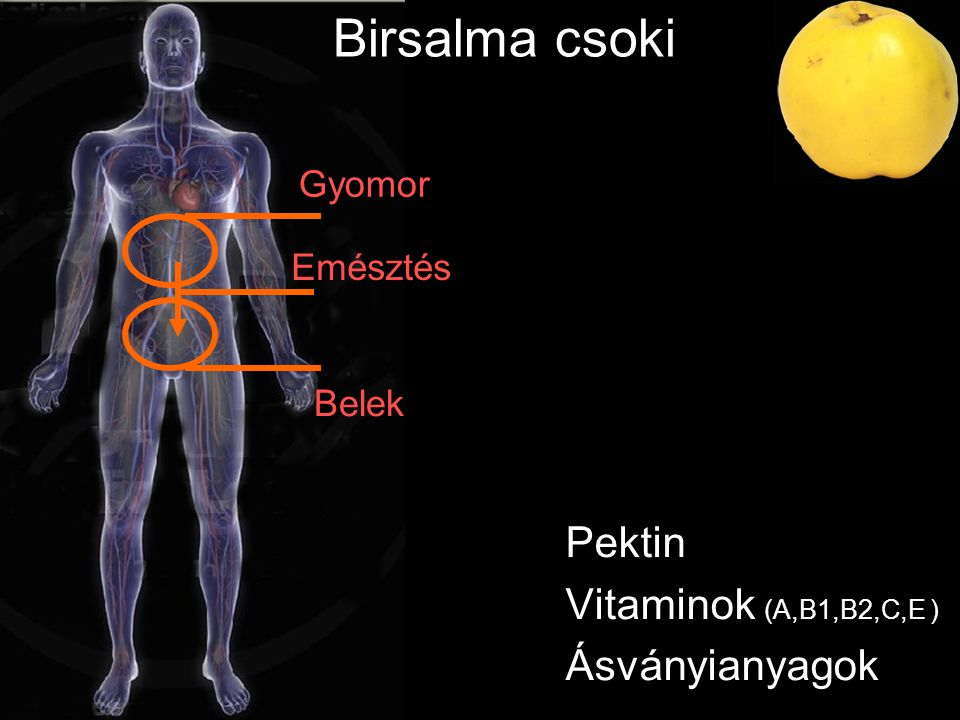 Pektin Vitaminok (A,B1,B2,C,E ) Ásványianyagok Gyomor Belek Birsalma csoki Emésztés