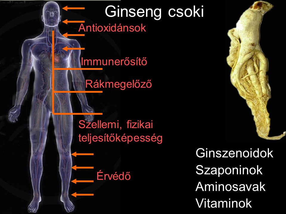 Csökenti az LDL-t B1-vitamin B2-vitamin B3-vitamin B6-vitamin Ásványok Komló csoki Gyomorpanaszok Vesetisztító Növeli a HDL-t Gombaölő Baktériumölő