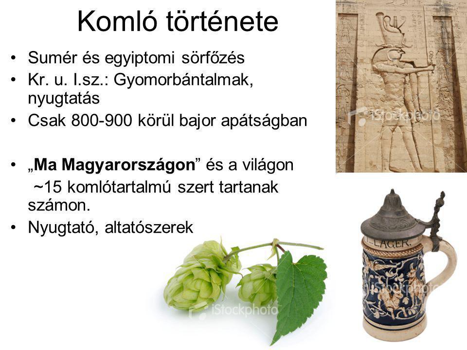Komló története Sumér és egyiptomi sörfőzés Kr. u.