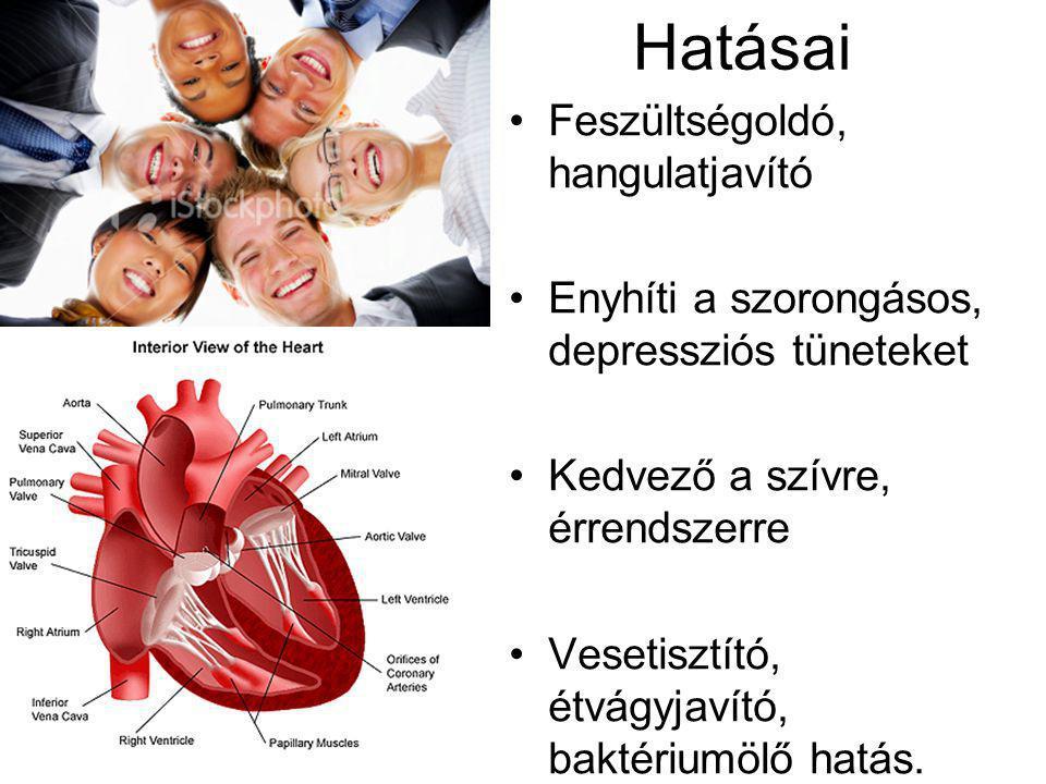 Hatásai Feszültségoldó, hangulatjavító Enyhíti a szorongásos, depressziós tüneteket Kedvező a szívre, érrendszerre Vesetisztító, étvágyjavító, baktériumölő hatás.