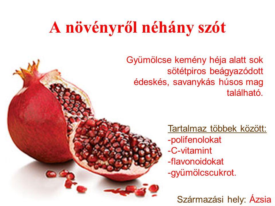 A növényről néhány szót Gyümölcse kemény héja alatt sok sötétpiros beágyazódott édeskés, savanykás húsos mag található.