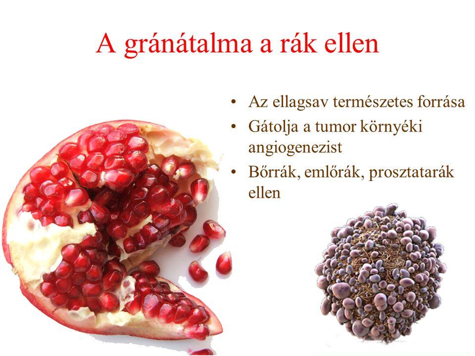 A gránátalma a rák ellen Az ellagsav természetes forrása Gátolja a tumor környéki angiogenezist Bőrrák, emlőrák, prosztatarák ellen