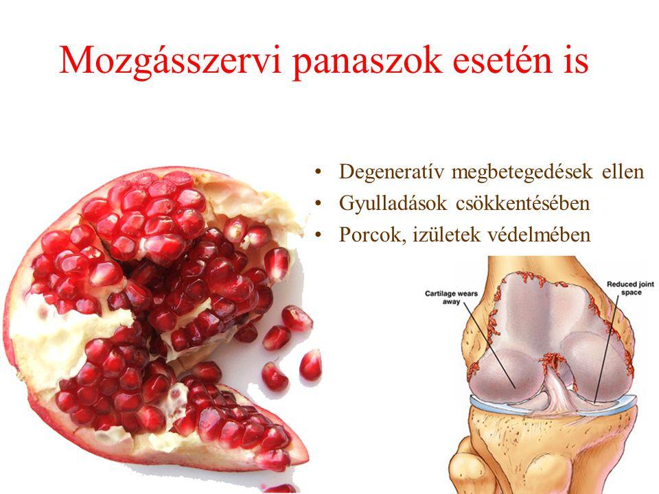 Mozgásszervi panaszok esetén is Degeneratív megbetegedések ellen Gyulladások csökkentésében Porcok, izületek védelmében