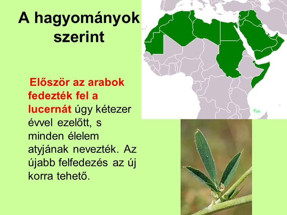 A hagyományok szerint Először az arabok fedezték fel a lucernát úgy kétezer évvel ezelőtt, s minden élelem atyjának nevezték. Az újabb felfedezés az ú