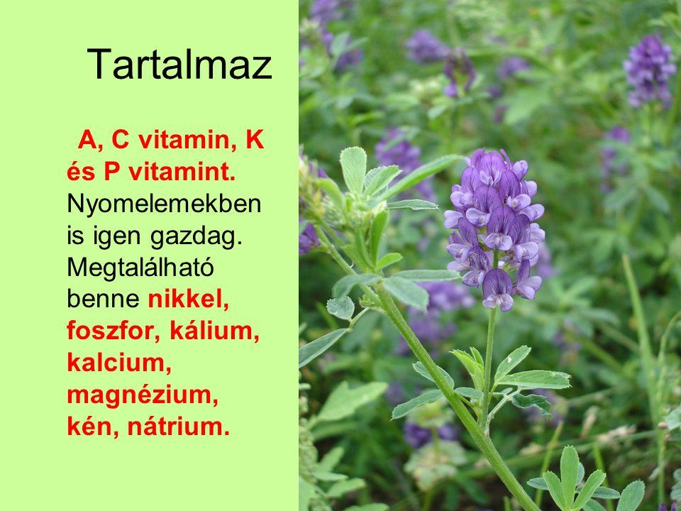 Tartalmaz A, C vitamin, K és P vitamint. Nyomelemekben is igen gazdag. Megtalálható benne nikkel, foszfor, kálium, kalcium, magnézium, kén, nátrium.