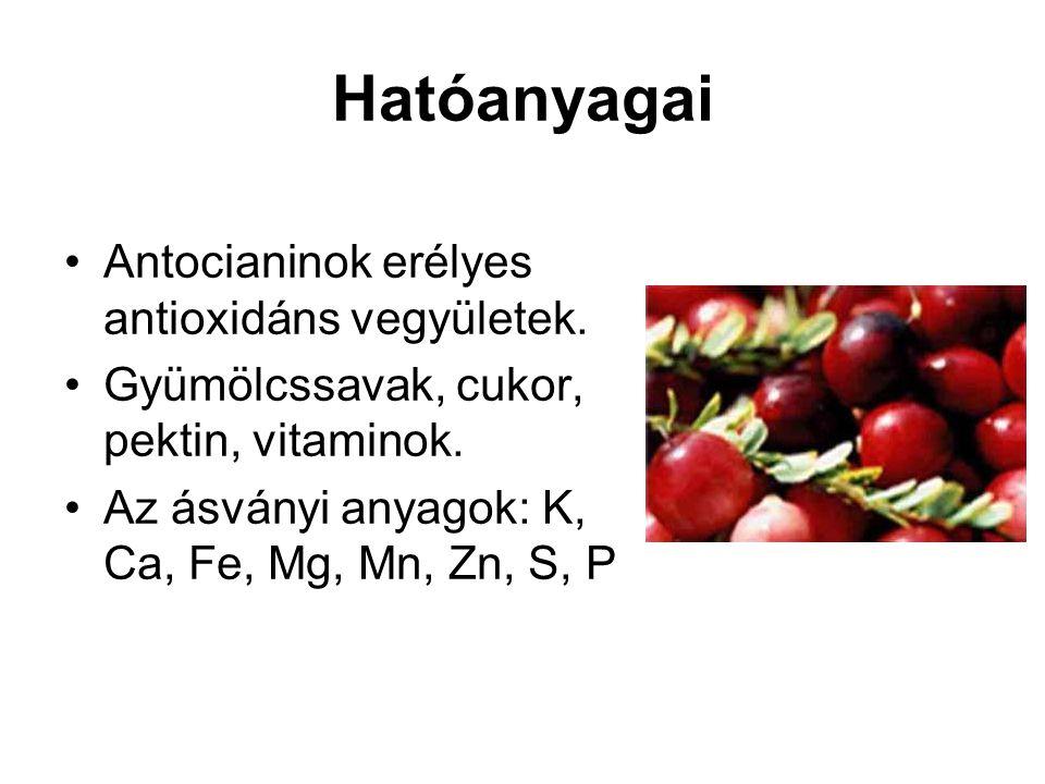 Hatóanyagai Antocianinok erélyes antioxidáns vegyületek. Gyümölcssavak, cukor, pektin, vitaminok. Az ásványi anyagok: K, Ca, Fe, Mg, Mn, Zn, S, P