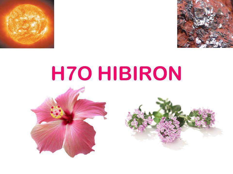 Hibiszkusz Frissítő, élénkítő hatású jelentős C-vitamin-forrás jó köptető, köhögéscsillapító torokgyulladásra kiválóan alkalmazható jótékonyan hat az emésztésre.