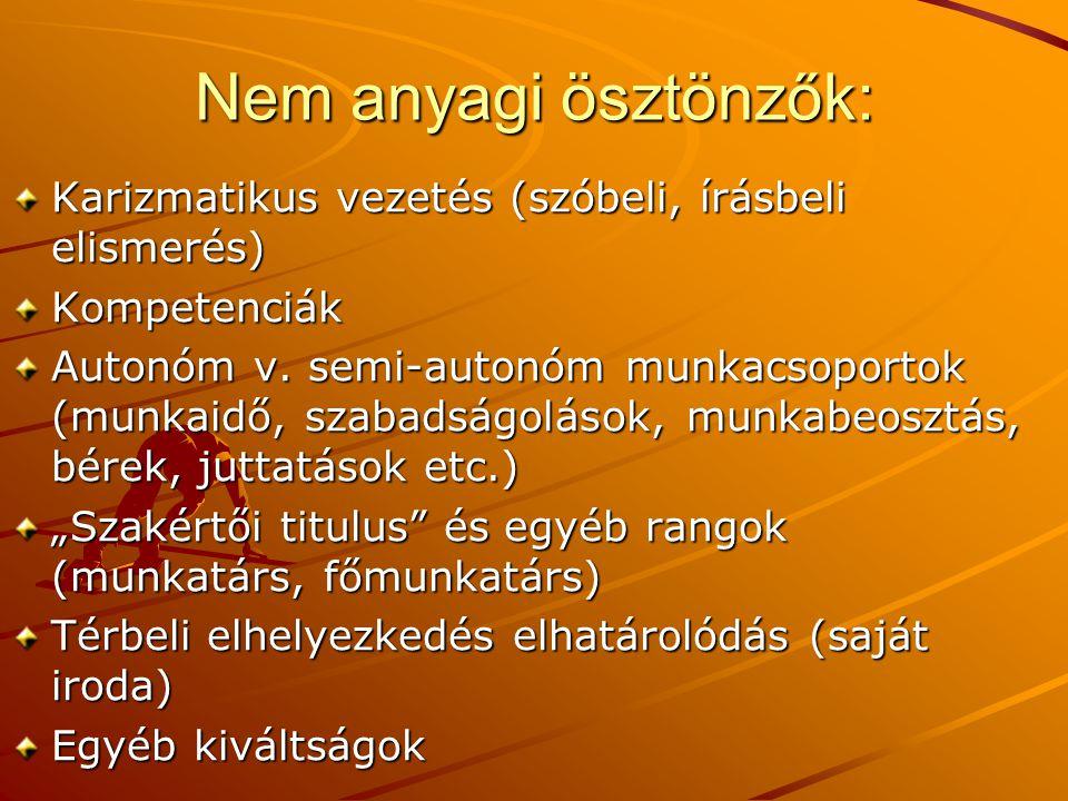 Nem anyagi ösztönzők: Karizmatikus vezetés (szóbeli, írásbeli elismerés) Kompetenciák Autonóm v. semi-autonóm munkacsoportok (munkaidő, szabadságoláso