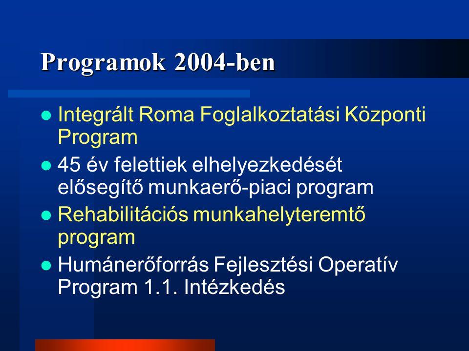 Programok 2004-ben Integrált Roma Foglalkoztatási Központi Program 45 év felettiek elhelyezkedését elősegítő munkaerő-piaci program Rehabilitációs mun