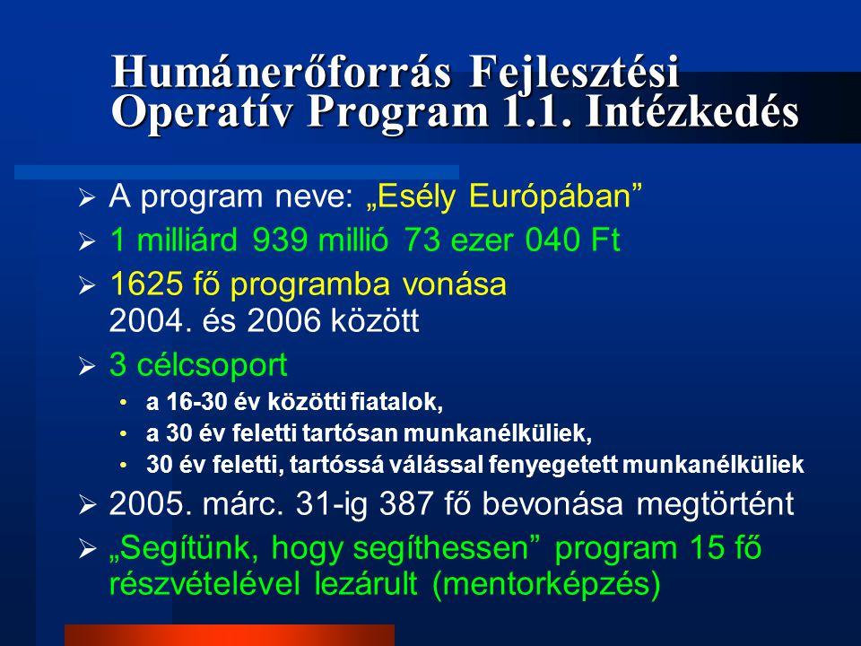 """ A program neve: """"Esély Európában""""  1 milliárd 939 millió 73 ezer 040 Ft  1625 fő programba vonása 2004. és 2006 között  3 célcsoport a 16-30 év k"""