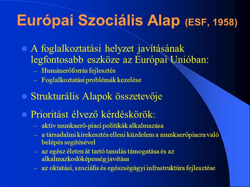 Európai Szociális Alap (ESF, 1958) A foglalkoztatási helyzet javításának legfontosabb eszköze az Európai Unióban: – Humánerőforrás fejlesztés – Foglal