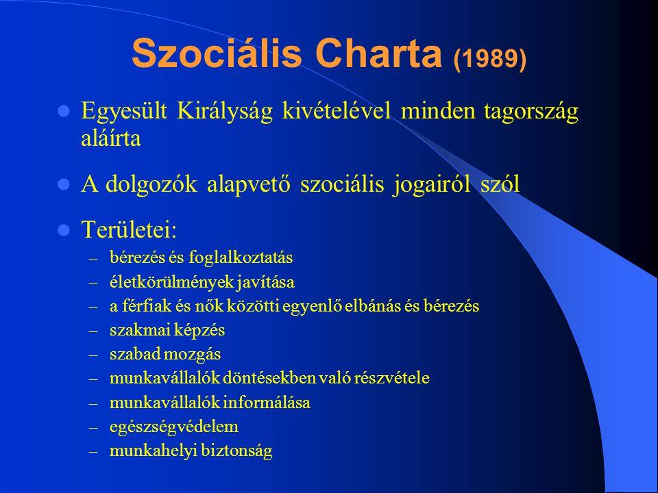 Szociális Charta (1989) Egyesült Királyság kivételével minden tagország aláírta A dolgozók alapvető szociális jogairól szól Területei: – bérezés és fo