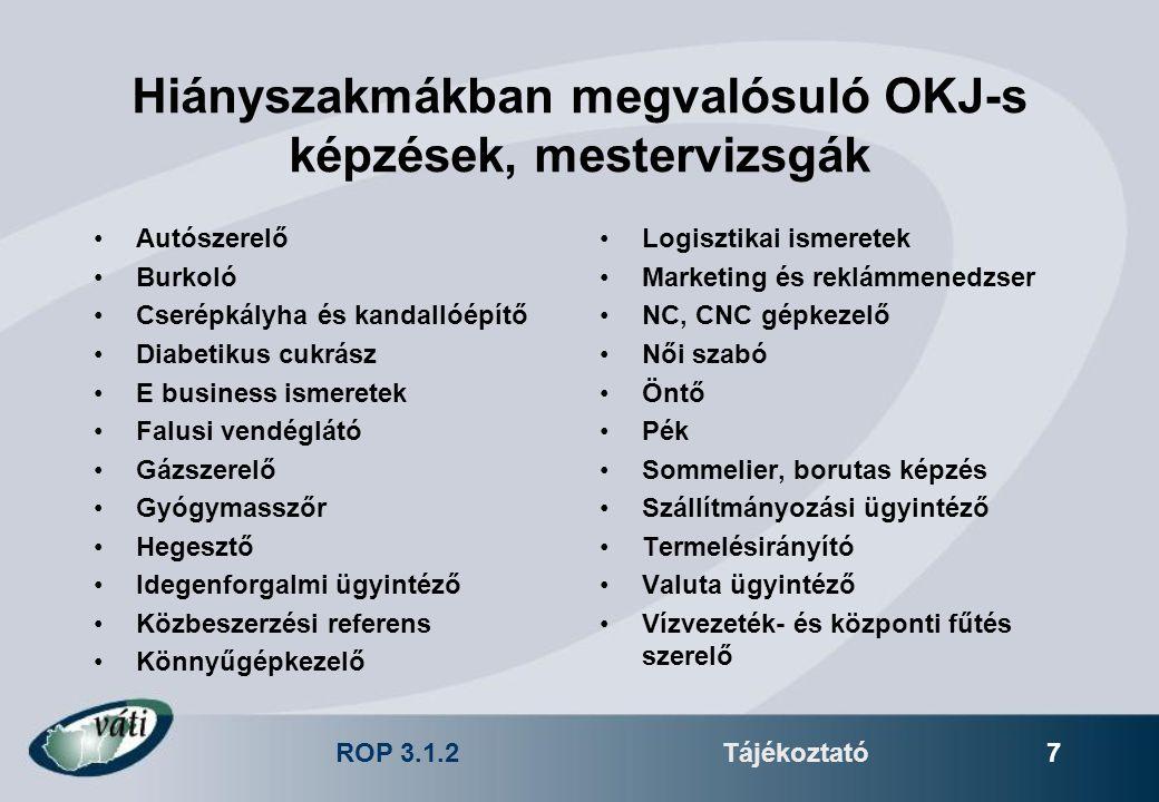 ROP 3.1.2Tájékoztató 7 Hiányszakmákban megvalósuló OKJ-s képzések, mestervizsgák Autószerelő Burkoló Cserépkályha és kandallóépítő Diabetikus cukrász