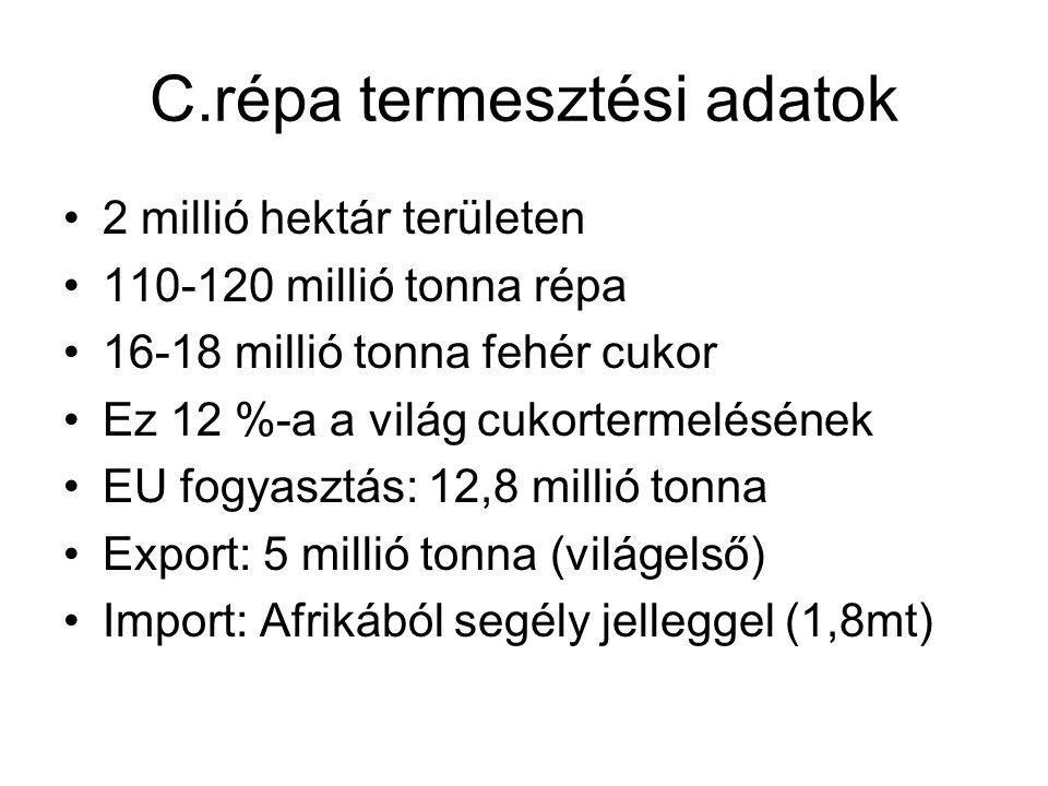 Izocukor 302-308 ezer tonna/év kukoricából Belső felhasználásra