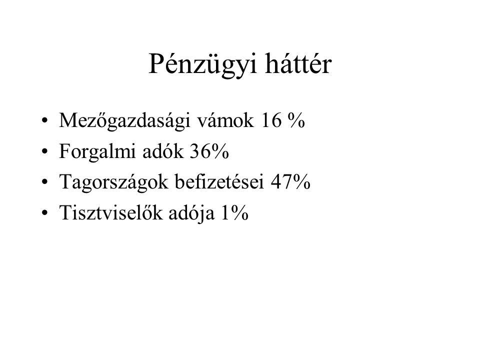 Pénzügyi háttér Mezőgazdasági vámok 16 % Forgalmi adók 36% Tagországok befizetései 47% Tisztviselők adója 1%