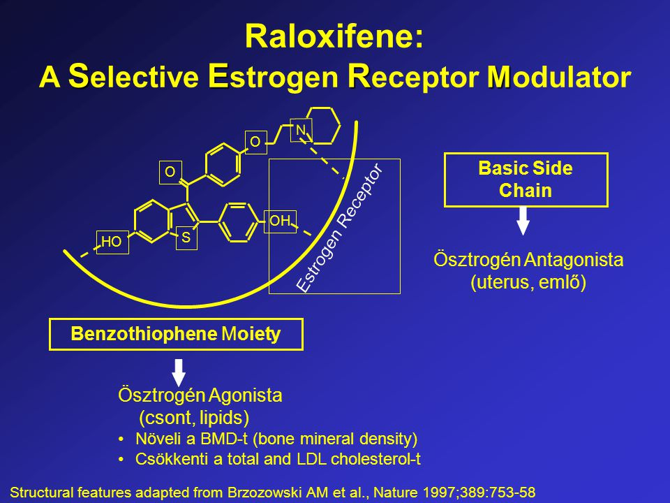 Basic Side Chain SER M Raloxifene: A S elective E strogen R eceptor Modulator Ösztrogén Agonista (csont, lipids) Növeli a BMD-t (bone mineral density) Csökkenti a total and LDL cholesterol-t Ösztrogén Antagonista (uterus, emlő) N OH O O HO S Benzothiophene Moiety Structural features adapted from Brzozowski AM et al., Nature 1997;389:753-58
