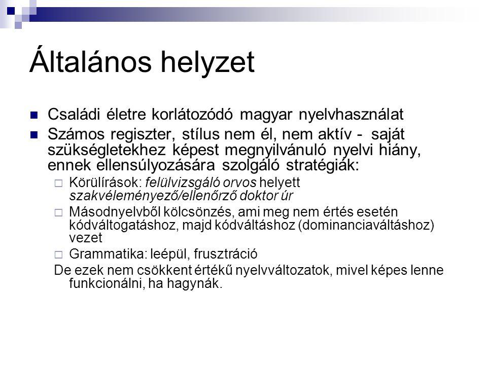 Általános helyzet Családi életre korlátozódó magyar nyelvhasználat Számos regiszter, stílus nem él, nem aktív - saját szükségletekhez képest megnyilvá