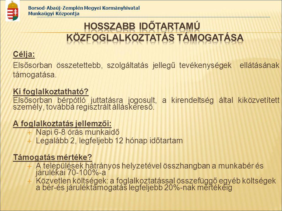 Borsod-Abaúj-Zemplén Megyei Kormányhivatal Munkaügyi Központja Célja:  Elsősorban bérpótló juttatásra jogosult személyek, illetve hátrányos helyzetű álláskeresők részére átmeneti munkalehetőség megteremtése értékteremtő közfoglalkoztatás keretében.