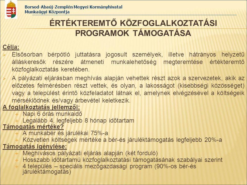 Borsod-Abaúj-Zemplén Megyei Kormányhivatal Munkaügyi Központja Célja:  Elsősorban bérpótló juttatásra jogosult személyek, illetve hátrányos helyzetű
