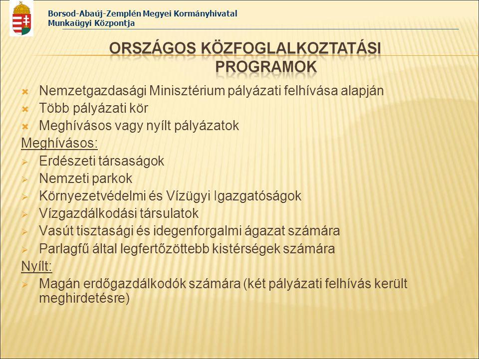 Borsod-Abaúj-Zemplén Megyei Kormányhivatal Munkaügyi Központja  Nemzetgazdasági Minisztérium pályázati felhívása alapján  Több pályázati kör  Meghí