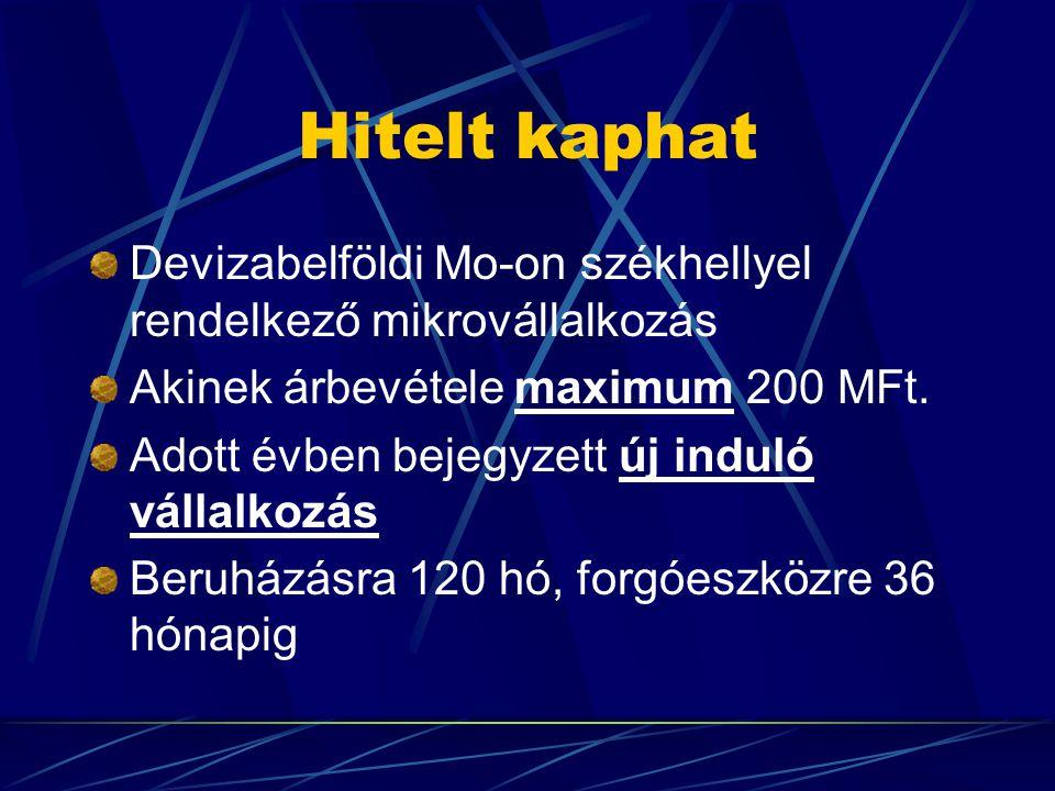 Hitelt kaphat Devizabelföldi Mo-on székhellyel rendelkező mikrovállalkozás Akinek árbevétele maximum 200 MFt.