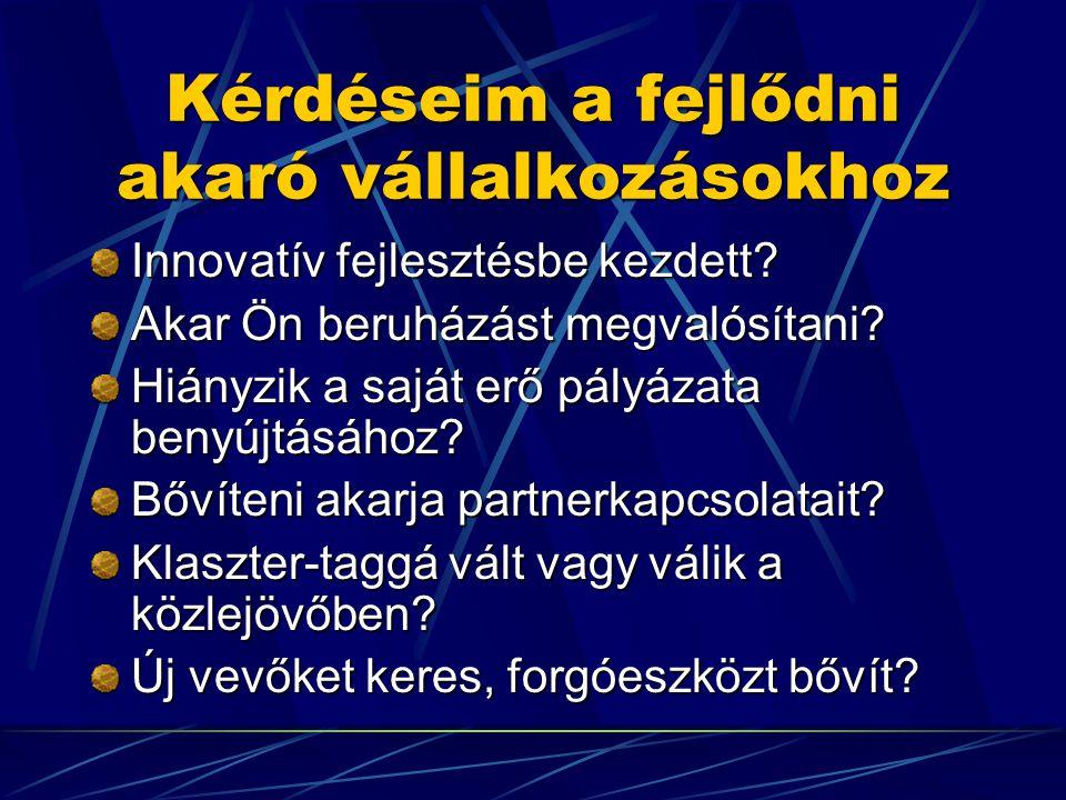 Kérdéseim a fejlődni akaró vállalkozásokhoz Innovatív fejlesztésbe kezdett.