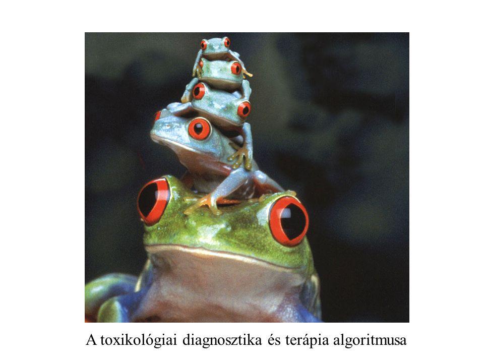A toxikológiai diagnosztika és terápia algoritmusa