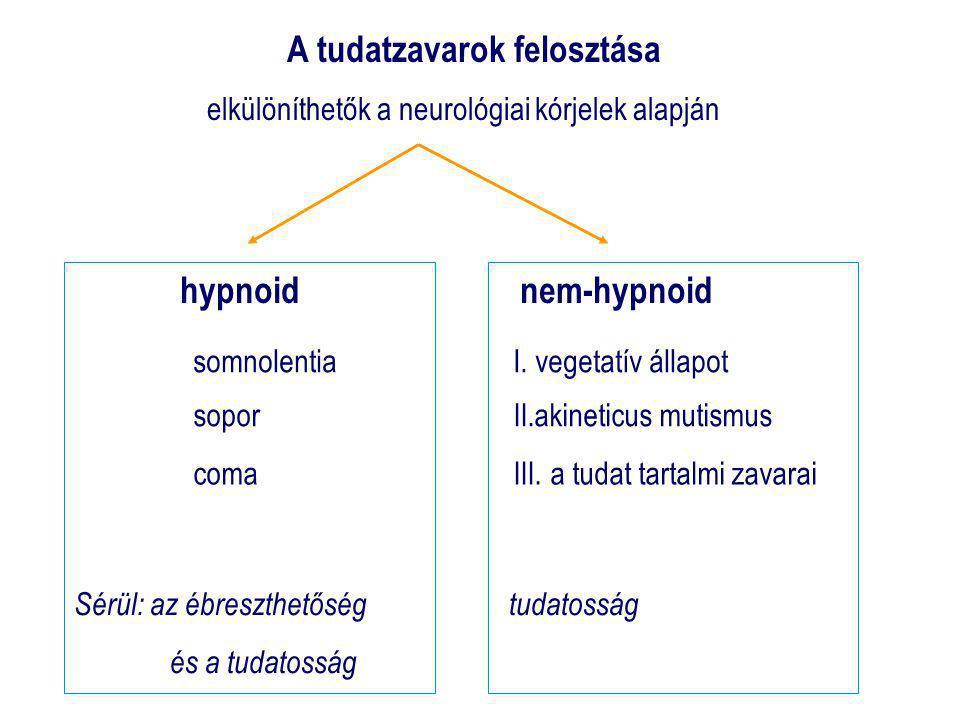 A tudatzavarok felosztása elkülöníthetők a neurológiai kórjelek alapján hypnoidnem-hypnoid somnolentiaI.