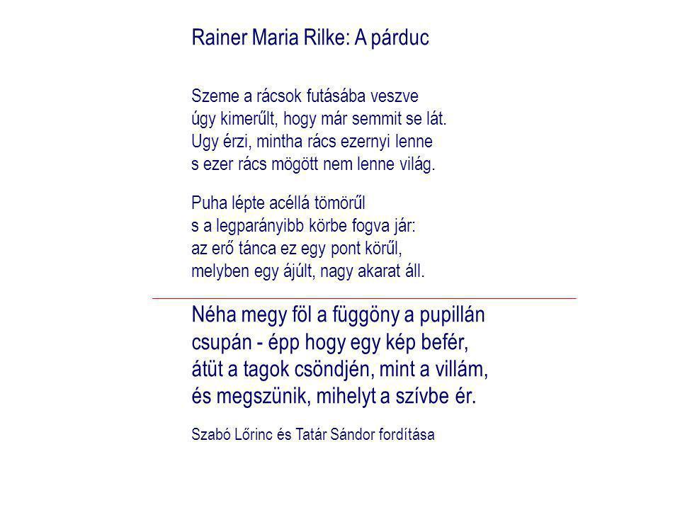 Rainer Maria Rilke: A párduc Szeme a rácsok futásába veszve úgy kimerűlt, hogy már semmit se lát.