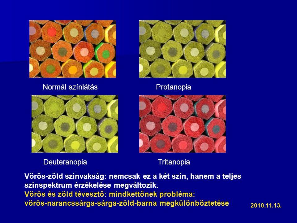 Normál színlátás Protanopia Deuteranopia Tritanopia Vörös-zöld színvakság: nemcsak ez a két szín, hanem a teljes színspektrum érzékelése megváltozik.