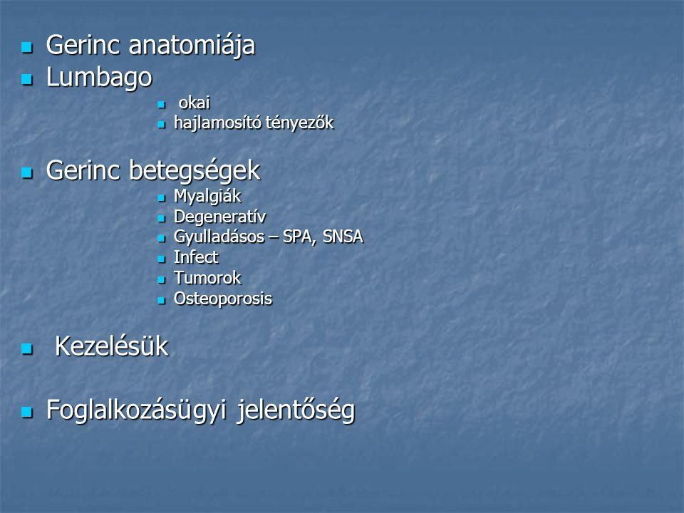 Gerinc anatomiája Gerinc anatomiája Lumbago Lumbago okai okai hajlamosító tényezők hajlamosító tényezők Gerinc betegségek Gerinc betegségek Myalgiák M