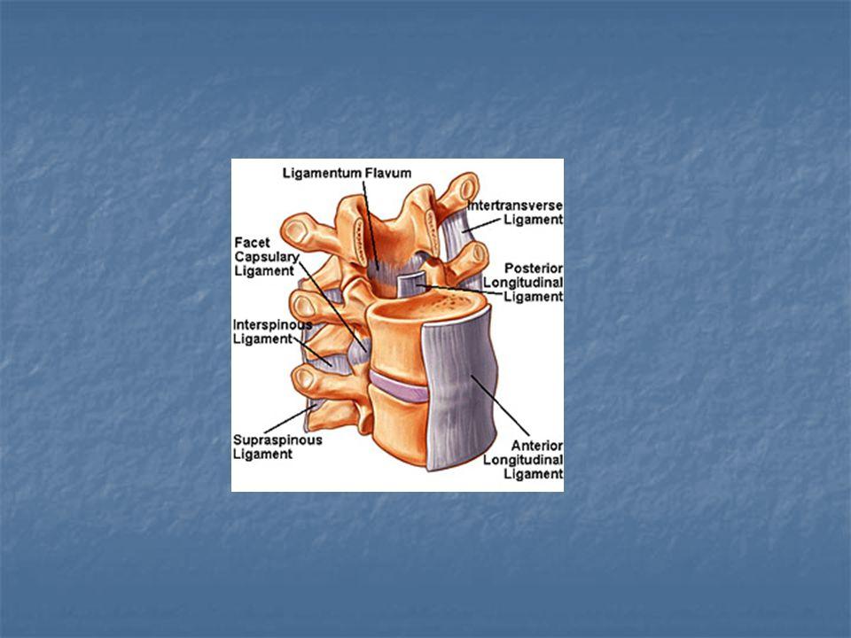 Discus hernia