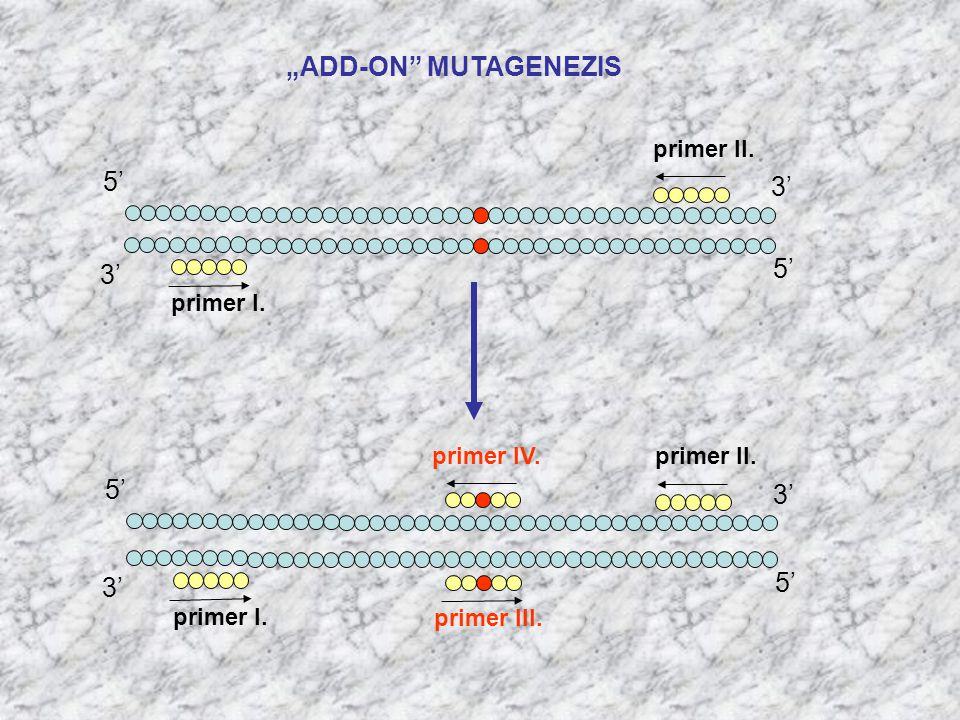 """ADD-ON"" MUTAGENEZIS primer II. primer I. 5' 3' 5' primer II. primer I. 5' 3' 5' primer IV. primer III."