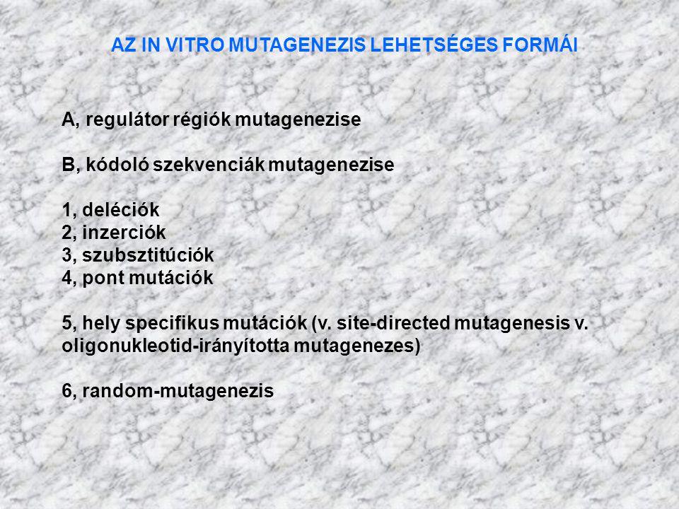AZ IN VITRO MUTAGENEZIS LEHETSÉGES FORMÁI A, regulátor régiók mutagenezise B, kódoló szekvenciák mutagenezise 1, deléciók 2, inzerciók 3, szubsztitúci