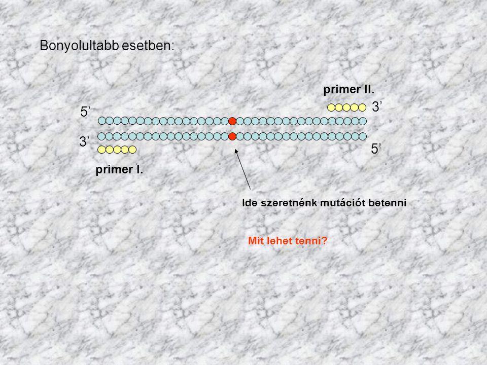 Bonyolultabb esetben: 5' 3' 5' primer II. primer I. Ide szeretnénk mutációt betenni Mit lehet tenni?