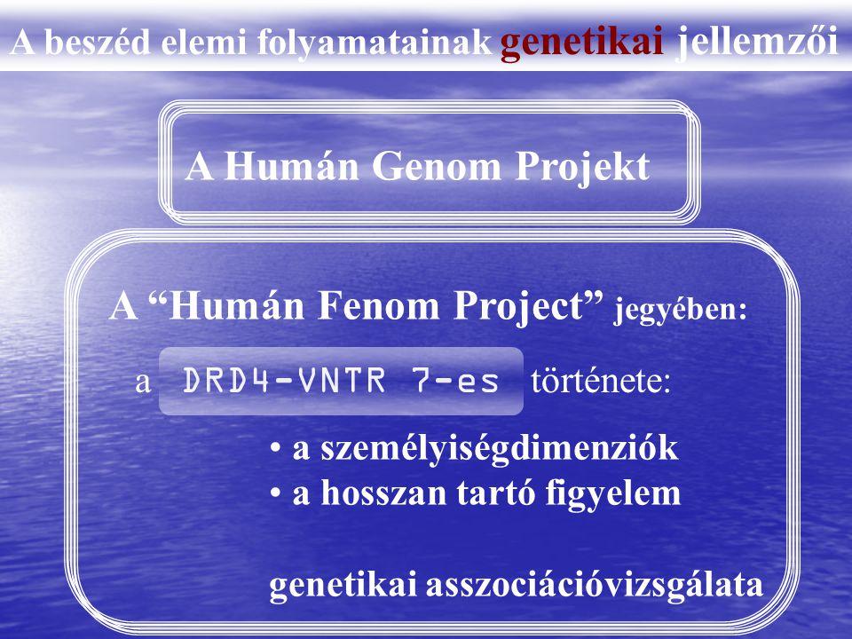 A beszéd elemi folyamatainak genetikai jellemzői A Humán Genom Projekt A Humán Fenom Project jegyében: a személyiségdimenziók a hosszan tartó figyelem genetikai asszociációvizsgálata a DRD4-VNTR 7-es története: