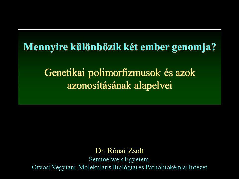 Mennyire különbözik két ember genomja? Genetikai polimorfizmusok és azok azonosításának alapelvei Mennyire különbözik két ember genomja? Genetikai pol