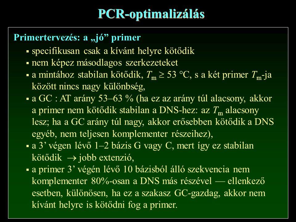 """PCR-optimalizálás Primertervezés: a """"jó primer  specifikusan csak a kívánt helyre kötődik  nem képez másodlagos szerkezeteket  a mintához stabilan kötődik, T m  53 °C, s a két primer T m -ja között nincs nagy különbség,  a GC : AT arány 53–63 % (ha ez az arány túl alacsony, akkor a primer nem kötődik stabilan a DNS-hez: az T m alacsony lesz; ha a GC arány túl nagy, akkor erősebben kötődik a DNS egyéb, nem teljesen komplementer részeihez),  a 3' végen lévő 1–2 bázis G vagy C, mert így ez stabilan kötődik  jobb extenzió,  a primer 3' végén lévő 10 bázisból álló szekvencia nem komplementer 80%-osan a DNS más részével — ellenkező esetben, különösen, ha ez a szakasz GC-gazdag, akkor nem kívánt helyre is kötődni fog a primer."""