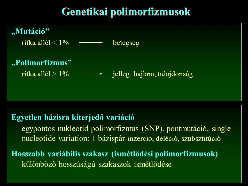 """Genetikai polimorfizmusok """"Mutáció ritka allél < 1%betegség """"Polimorfizmus ritka allél > 1%jelleg, hajlam, tulajdonság Egyetlen bázisra kiterjedő variáció Hosszabb variábilis szakasz (ismétlődési polimorfizmusok) egypontos nukleotid polimorfizmus (SNP), pontmutáció, single nucleotide variation: 1 bázispár inzerció, deléció, szubsztitúció különböző hosszúságú szakaszok ismétlődése"""