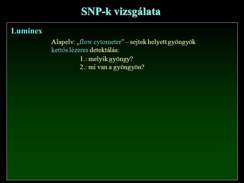 """SNP-k vizsgálata Luminex Alapelv: """"flow cytometer"""" – sejtek helyett gyöngyök kettős lézeres detektálás: 1.: melyik gyöngy? 2.: mi van a gyöngyön?"""